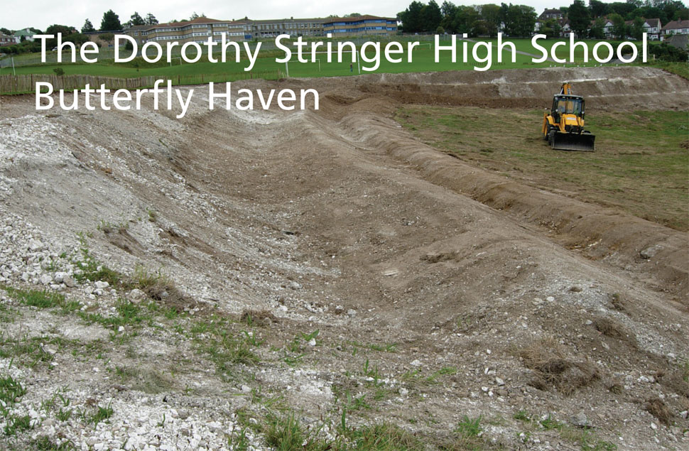 Dorothy Stringer High School Butterfly Haven