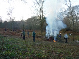 Butterfly Conservation - Sussex Branch